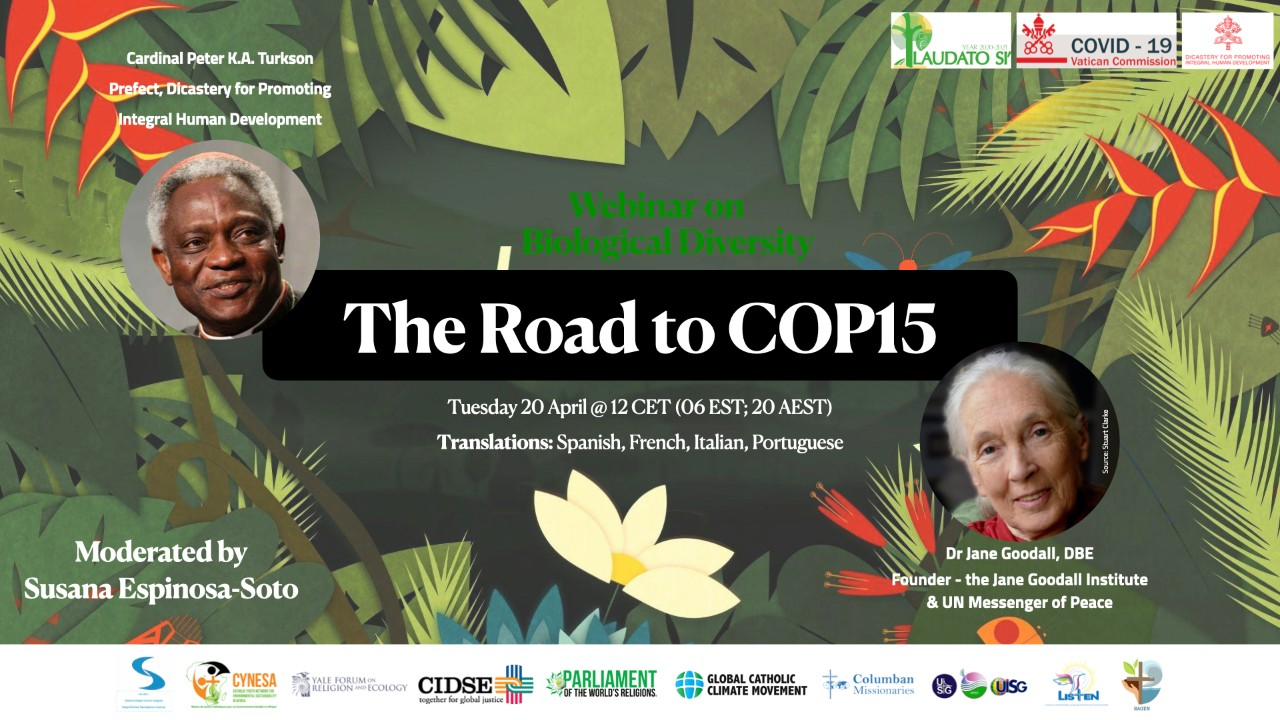 The Road to Cop15 A Laudato Si' inspired Biodiversity Webinar